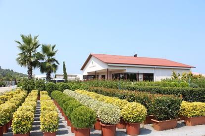 VRL Garden